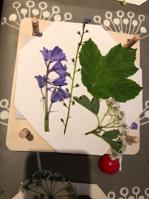 Using a flower press - Jemima