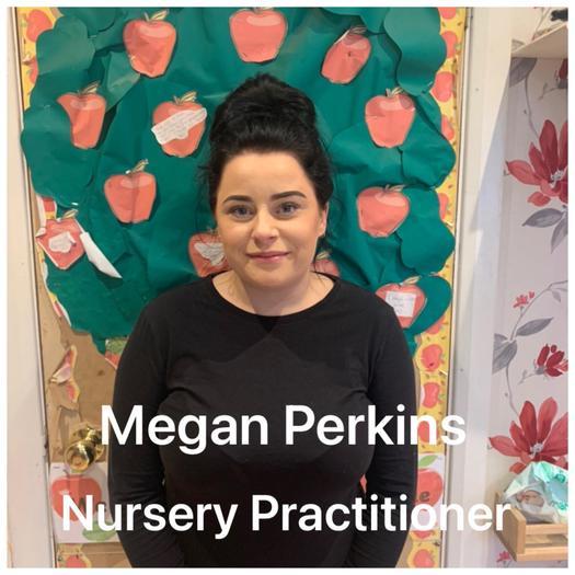 Nursery Practitioner Level 3