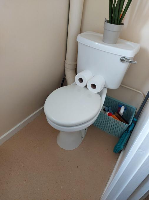 Toilet art!
