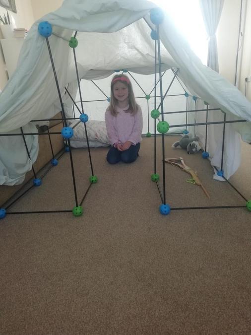 A 3D shape den