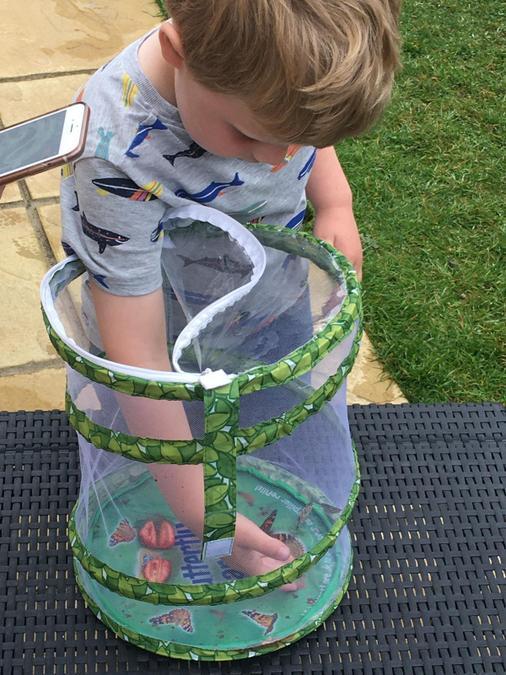 Carefully handling the butterflies