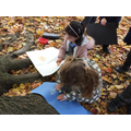 We did some tree rubbings using chalk.