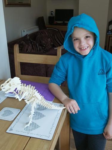 Harry's Dinosaur Puzzle