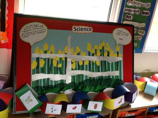 First we looked at habitats and food chains