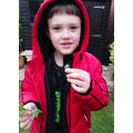 Elliott trying some mint leaves.