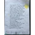 Shay's War Poem
