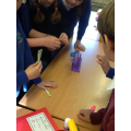 This term, we have loved undertaking science investigations.