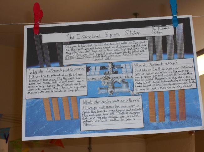 Y5 project work