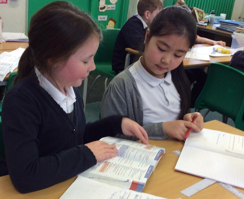 Dictionary Skills - Working in Team