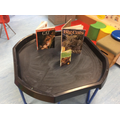 We looked at tiger and cat facts using the books from the library