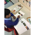 Describing differences between the deserts and rainforests.