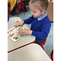 Milana enjoys completing the different season puzzles