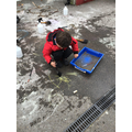Leo explores what happens when he adds water to his chalk drawing