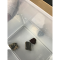 Checking if there is trapped air inside different types of rocks.