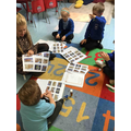 Sequencing the story of Noah's Ark
