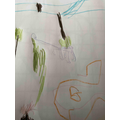We can draw and write about dinosaurs.
