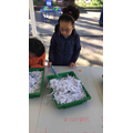 Finding words and adding them to a sentence.