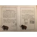 reports, on Woolly Mammoths.