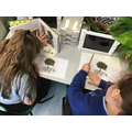 Information writing about trees