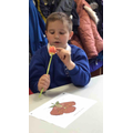 Looking closely at a tulip.