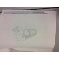 Sketching the Mona Lisa