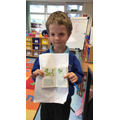 Finding facts about flowers,