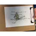 Independent drawing of a bee with the correct labels.