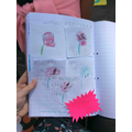 We also learnt about the venus fly trap. Tiffany made a comic strip of how it eats insects