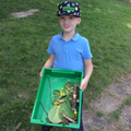Joshua collected lots for his nature art