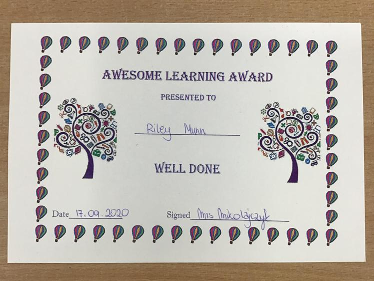 Fantastic work Riley! You were very active during the lessons! Well done!:)