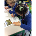 We did spring writing about what we could see in spring pictures.