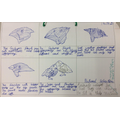 Learning about natural selection through the example of the Galapagos finches