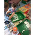 Team work to build an igloo out of sugar cubes.