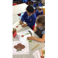 Labelling the parts of a flower.