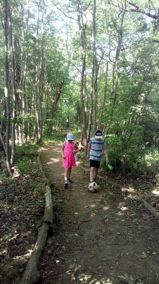 Sean going for a walk in the woods (Y5)