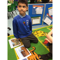 We learnt about the story from the bible called Noah's arch.