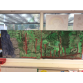 We painted a jungle for our Tiger