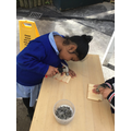 We practise using the hammers.