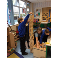 Team work and problem solving building the tallest tower.