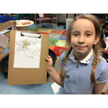 Bee drawing and labelling.