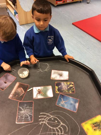 Well done Bogdan, your spider picture is brilliant.
