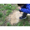 Digging to find different soil types