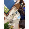 Research about Plants.
