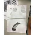 Week 4 - Sketching