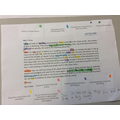 Identifying the features of a diary entry