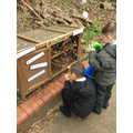 Investigating the Bug Hotel