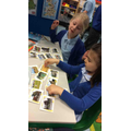 In the geography area we sorted what features were from towns and countryside.