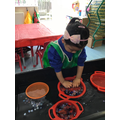 Khadija uses language of quantities when playing with the gems