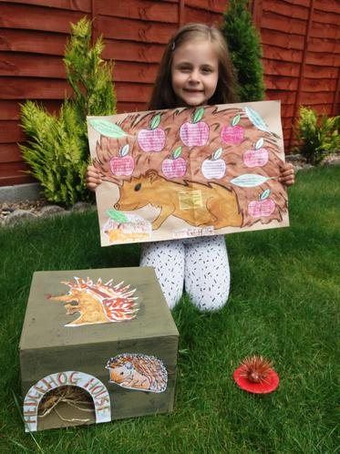Amelia T's spectacular hedgehog poster and house!