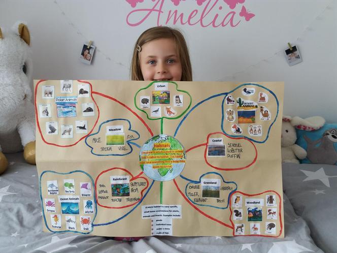Amelia T's wonderful habitats poster!
